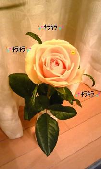100126_0044~010001.jpg